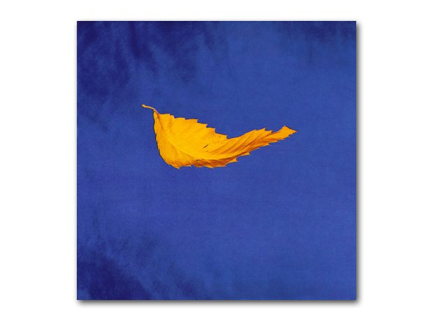 New Order - True Faith album cover
