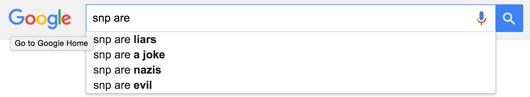SNP google search sreengrab