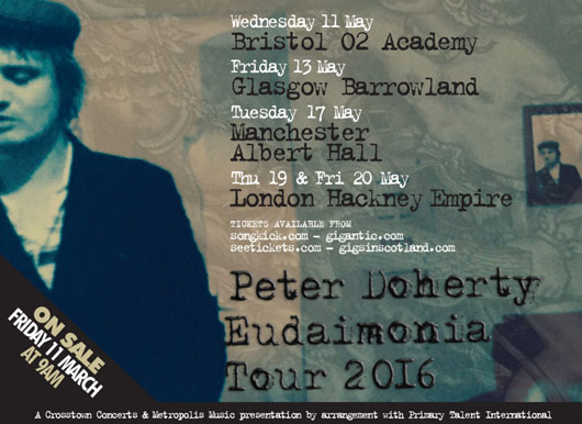 Pete Doherty solo tour date image 2016