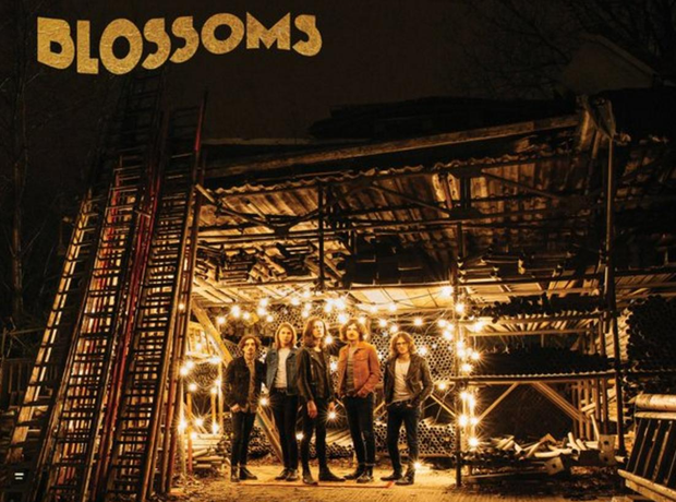 Blossoms album artwork track