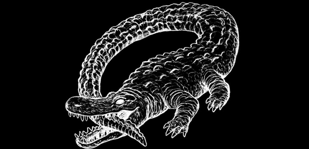 So thats why catfish and the bottlemen have an alligator on their catfish and the bottlemen the ride album artwork freerunsca Image collections