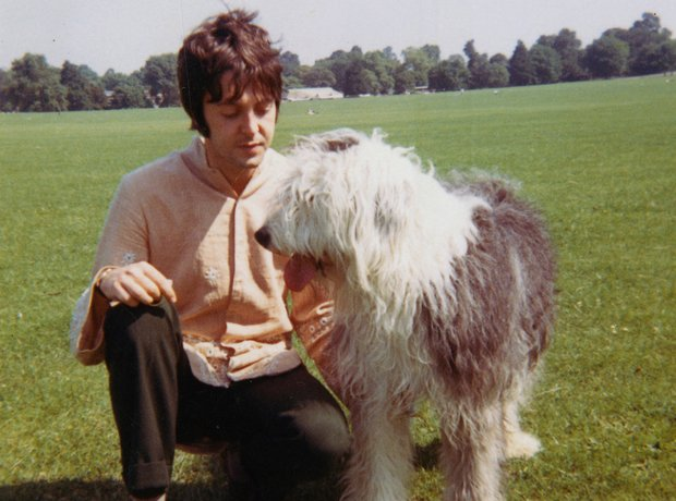 1 Macca Poses With His Old English Sheepdog Martha On Primrose Hill In London