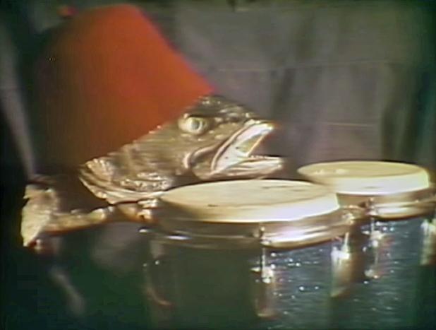 Barnes And Barnes Fish Heads video