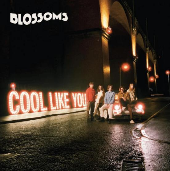 Blossoms Cool Like You album artwork
