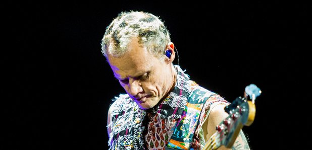 Red hot Chili Peppers Bassist Flea at the 2014 Lol